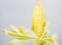 Two tone of sweet Corn. On de-focus concrete background Royalty Free Stock Photos