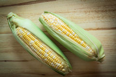 Two tone of sweet Corn on wooden background. Two tone of sweet Corn on wooden plate  background with vignette Stock Image