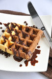 Two Tone Waffle with Chocolate Sauce Royalty Free Stock Images