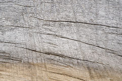 Two Tone Wood Grain. A macro of aged hardwood showing a two toned grain Royalty Free Stock Photo