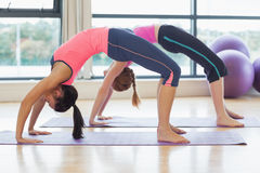 Two toned women bending over backward in fitness studio Royalty Free Stock Images