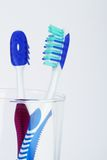 Two tooth brush Royalty Free Stock Photo