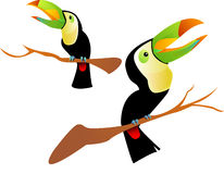 Two toucan bird. Illustration of two exotic tropical toucan bird on a branch Royalty Free Stock Photos