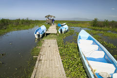 Two tour boats at dock in marsh areas of Lake Naivasha, Great Rift Valley, Kenya, Africa Royalty Free Stock Photos