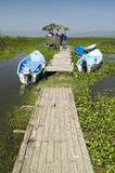Two tour boats at dock in marsh areas of Lake Naivasha, Great Rift Valley, Kenya, Africa Royalty Free Stock Images