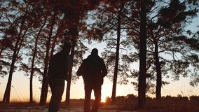 Two tourists men silhouette sunset go hiking in the forest sunlight . travel travel tourism group of tourists walking. Two tourists men silhouette sunset go stock footage