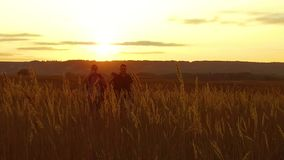 Two tourists silhouettes. two tourists go at nature sunset. tourist silhouette nature slow motion video. Two tourists silhouettes. two tourists go nature sunset stock footage