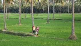 Two tourists walking through the field in Hampi. HAMPI, INDIA - 28 JANUARY 2015: Two tourists walking through the field in Hampi stock video