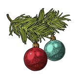 Two toy balls on Branch fir tree For Merry Christmas Stock Photography