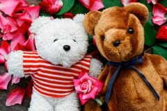 Two Toy bear doll have falling in love with Rose petals background . Two Toy bear doll have falling in love with Rose petals background in valentine day royalty free stock images