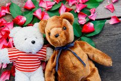 Two Toy bear doll have falling in love with Rose petals background . Two Toy bear doll have falling in love with Rose petals background in valentine day royalty free stock image