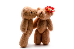 Two toy bears Stock Images