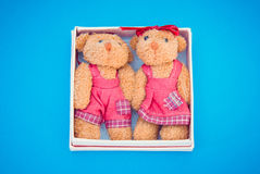 Two toy bears in small gift box. On blue background Royalty Free Stock Image