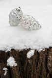Two toy cones on tree stump in snow Royalty Free Stock Images