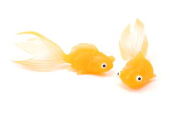Two Toy Goldfish. On a white background Royalty Free Stock Photos