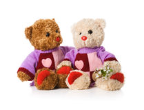 Two toy teddy bears Royalty Free Stock Image