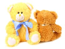 Two toy teddy bears isolated on white background stock images