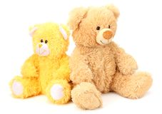 Two toy teddy bears isolated on white background royalty free stock photos