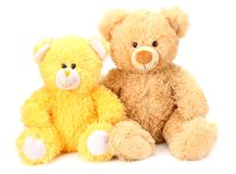 Two toy teddy bears isolated on white background royalty free stock images