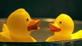 Two yellow rubber ducks in hot water. Two toy yellow rubber ducks in hot water stock footage
