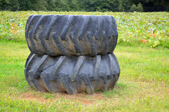 Two tractor tires. Two worn tractor tires  in a field one on top of the other with crops and trees behind Royalty Free Stock Photo
