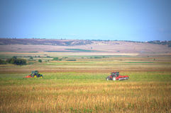 Two tractors in field Royalty Free Stock Image