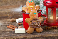 Two traditional homemade gingerbread man Royalty Free Stock Photography