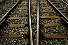 Two Train tracks in autumn royalty free stock images