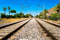Two train tracks in perspective Royalty Free Stock Image