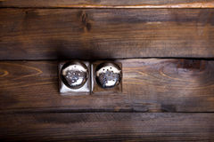 Two transparent cans of salt and pepper shaker on wooden background Stock Images