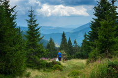 Two travelers walk along the alpine meadow Stock Photos