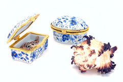 Two treasure chests and shell Stock Image