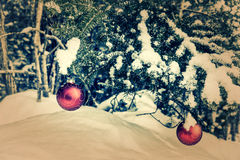 Two Tree Hanging Red Christmas Baubles - Retro, Faded. Two red Christmas bauble decorations hanging off a spruce tree outside partially covered in snow. Room for royalty free stock photography