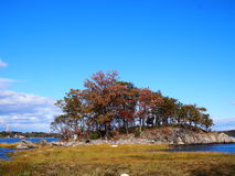 Two tree island Bronx NY Royalty Free Stock Image