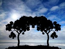 Two trees. On a sky background royalty free stock image