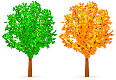Two trees. Royalty Free Stock Photo