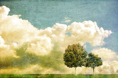 Two trees against cloudy skyline. With space for text or image Stock Photos