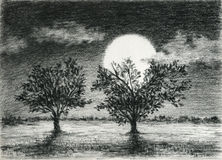 Two trees in the moonlight Stock Photography
