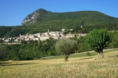 Two trees in Serra San Quirico. Views of the little town of Serra san Quirico in the Marche region of Italy Stock Photography