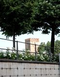 Two trees tower and white roses on the Adige river in Verona Stock Photos