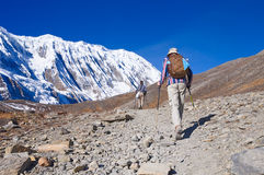 Two trekkers running on the road against Tilicho Stock Image