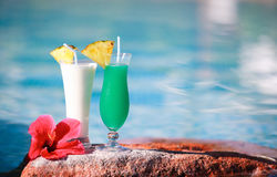 Two tropical cocktails Stock Photography