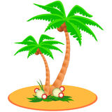 Two tropical palm trees Royalty Free Stock Photography