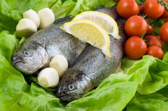 Two trout with lemon and garlic Stock Images