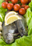 Two trout with lemon and garlic Stock Photo