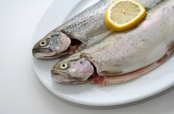 Two trouts on plate Royalty Free Stock Image