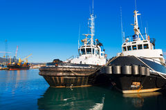 Two Tugboats and Containers Ship Stock Photography