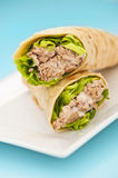 Two tuna melt wrap on a white plate. On a blue background Stock Image