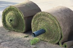 Two Turf Rolls. Two rolls of turf on princes street gardens in Edinburgh royalty free stock photo