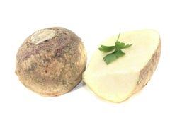 Two Turnip Stock Image